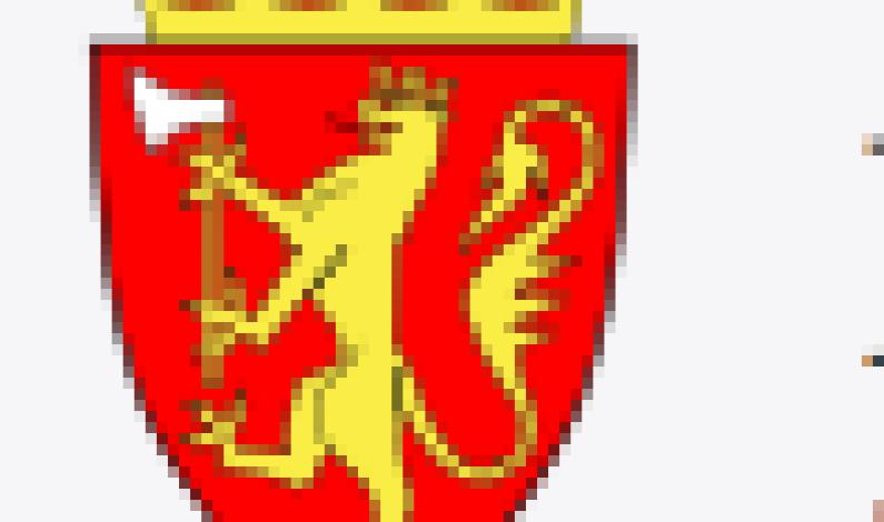 DØMT FOR VOLD MOT HUNDEVALP
