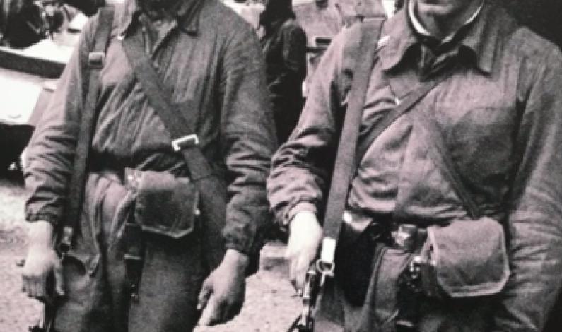 TSJEKKIA: 30 års jubileum for jernteppets fall
